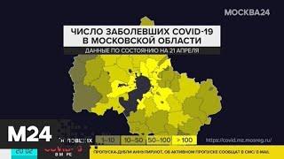 В Подмосковье выявлено 718 новых случаев заражения коронавирусом - Москва 24