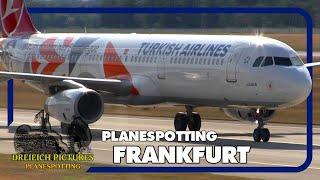 Planespotting Frankfurt Airport   Juli 2017   Teil 1