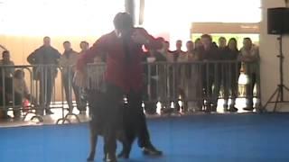 Flanagan et Plinio - Dog Dancing - 1er Tour.