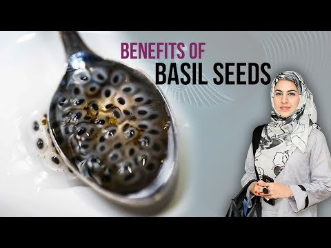 Health Benefits Of Basil Seeds | Tukh Malanga Se Wazan Kam Karne Ka Tarika