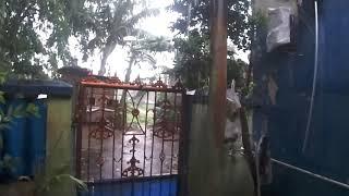 CAPTURING THE RAIN SUARA UJAN DEPAN RUMAH BIKIN ADEM ASMR RAIN FALL WITH AUDIO VIDEO ZOOM Q4