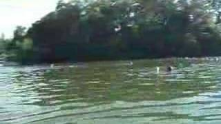 Fun in the Water, Hot Springs Village, Arkansas,