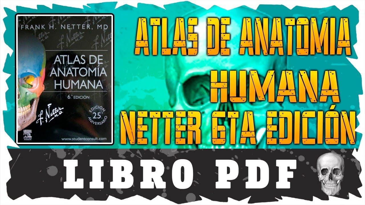 Atlas de Anatomía Humana | Libro PDF | Netter | 6ta Edición | 2017 ...