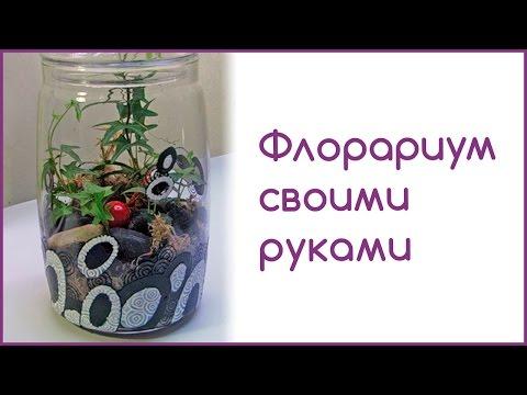 Флорариум своими руками. Сад в стекле.