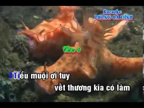 karaoke Trích doan  Ðào Hoa Khách