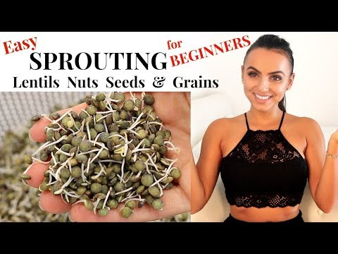 how-to-easily-sprout-lentils,-nuts-&-seeds-at-home-|-growing-sprouts-for-beginners-|-tyler-health