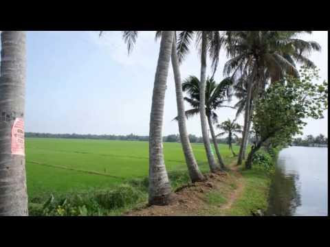 Malayalam Nadanpattu ittittam kiliye...V@ikh@