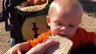 Israel and Samuel Dillard have a picnic with grandma at the pumpkin patch-October 2018