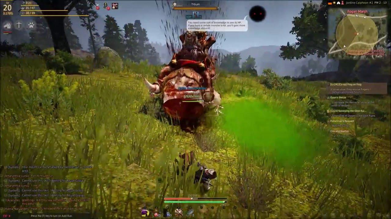 Black Desert Online | Quest Frog On Frog SOLO | CB2