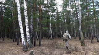 Один в лесу | Чага | Защита от клещей | Заготовка бересты | Испытание нового огнива