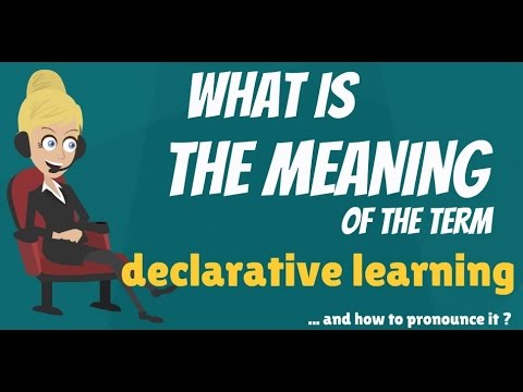 What is DECLARATIVE LEARNING? What does DECLARATIVE LEARNING mean?