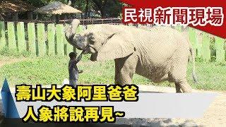 壽山大象阿里爸爸 人象將說再見~【民視新聞現場】