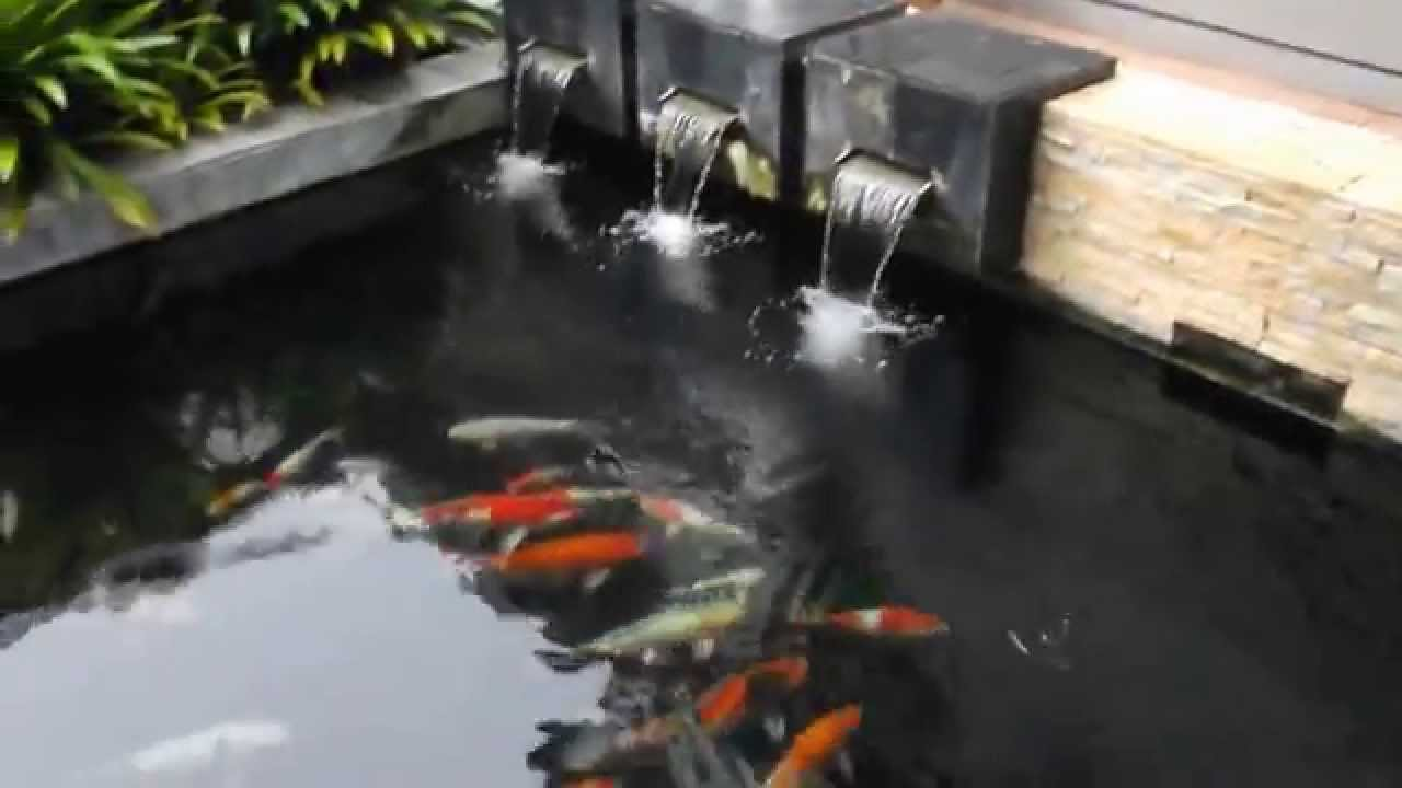 Clean Clear Water Koi Pond 4ft Depth By Aurapond Youtube