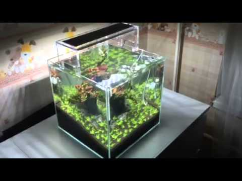 ada nano cube 30l youtube. Black Bedroom Furniture Sets. Home Design Ideas