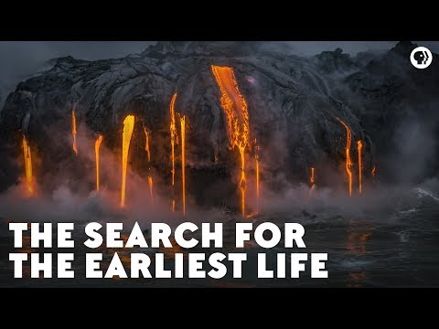 The Search for the Earliest Life