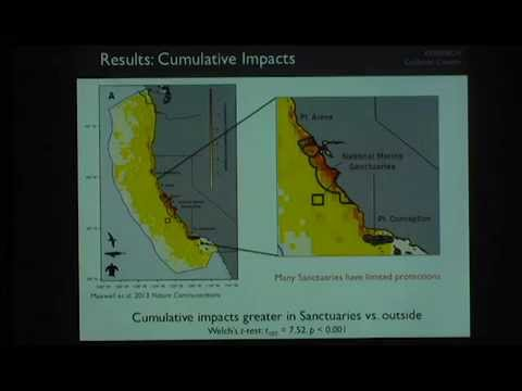 "Dr. Sara Maxwell presents ""Spatial Ecology and Management of Marine Predators"""