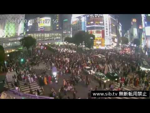 【sibch.tv LIVE CAMERA】渋谷駅前交差点ハロウィン動画 20141031