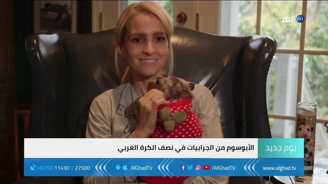 يوم جديد - صداقة غريبة لفتاة مع حيوان الأبوسوم