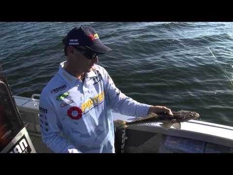 Fishing For Flathead Using Soft Vibes - Reel Action TV