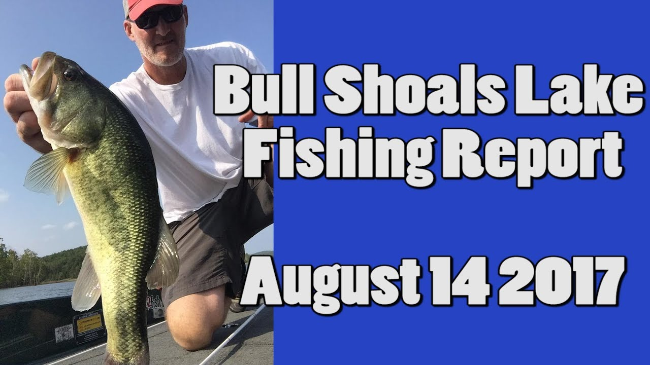del colvin bull shoals lake fishing report august 14
