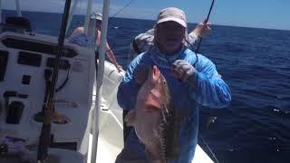 Необычный улов на Океане в США # Редкая рыба