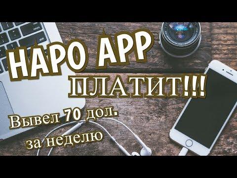 Заработок в Интернете с приложением HAPO App   Работа в Интернете без вложений - АКЦИЯ ЗАКОНЧЕНА