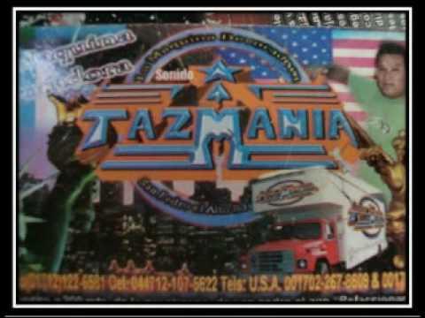 sonido TAZMANIA salvame en vivo en san felipe del progreso vaile de feria anual08