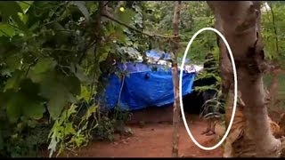 REAL PARANORMAL CAUGHT IN WOODS | Scary ghost encounters caught on camera