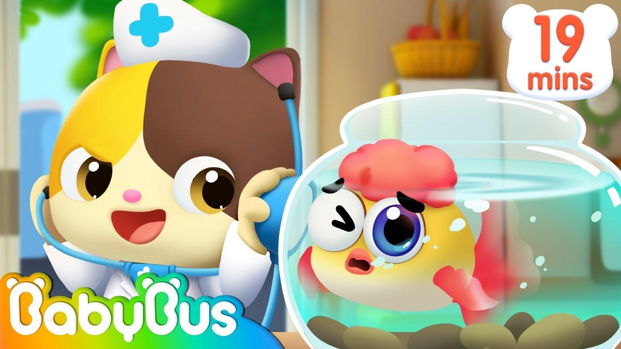 Baby Doctor and Pet Song | Kids at Home | Nursery Rhymes | Kids Songs | Baby Cartoon | BabyBus