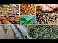 Best Herbs for Energy, Using Natural Herbal Stimulants