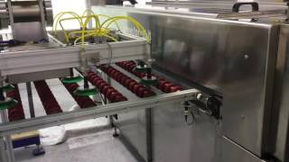 New Forvet Combiflex Automatic Glass Machine presented by IGE Glass Technologies