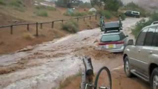 Spain: 10,000 animals DROWNED in harrowing farmland flash floods