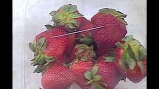 Needles in Australian Strawberries