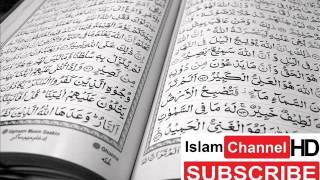 Surah 63 - Al Munafiqun - Sheikh Mishary Rashid Al Afasy