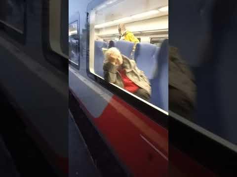 Ласточка комфорт. Москва Ленинградский вокзал- Клин