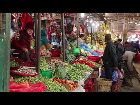 Kathmandu Vegetable  and Fruits  Market-Ek Report