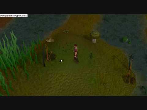 Hunting Swamp Lizards In Runescape