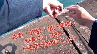 釣魚 綁魚勾 及 勾南極蝦 達哥紀錄分享~一個月沒釣魚了!!一直遇到天氣不佳~家裡有事~只好剪剪影片~看看解解癢了!!綁八字環用雙套結再打一個結加固,綁勾注意小指助拉,南極蝦要去尾在水裡不翻轉