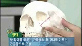 [안면윤곽술]연예인얼굴선- 광대뼈 축소술-로미안.wmv