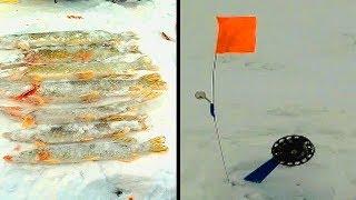 ЛОВЛЯ ЩУКИ НА ЖЕРЛИЦЫ Первая рыбалка в этом сезоне на жерлицы в Казахстане озеро Речное