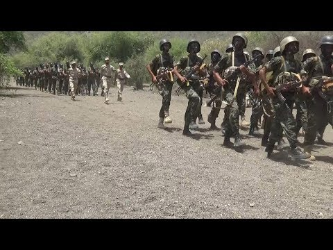 Yemen: Houthis released the fighters Ansarullah.