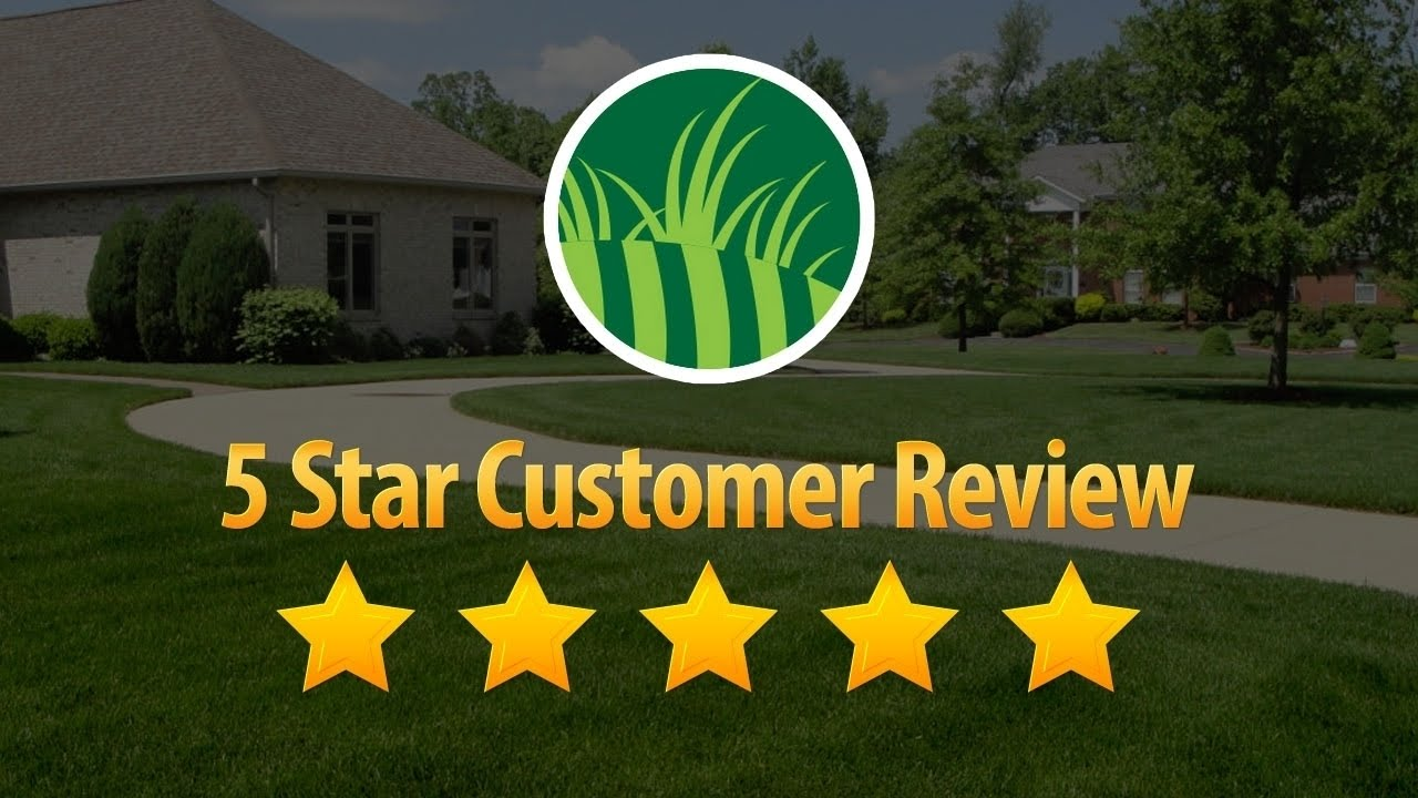 Lawn Care Service Orlando Remarkable 5 Star Review by Tammy A. - Lawn Care Service Orlando Remarkable 5 Star Review By Tammy A. - YouTube
