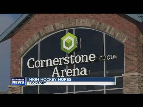 Hockey arena offers high hopes for economic development in Lockport