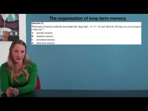 VCE Psychology - The Organisation of Long-Term Memory