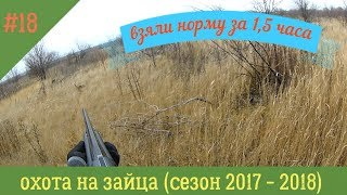 (18+) ВЗЯЛИ НОРМУ ЗА 1,5 ЧАСА...(ОХОТА НА ЗАЙЦА) СЕЗОН 2017 -2018...