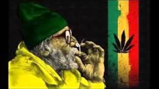 snoop dogg smoke weed everyday hd dubstep remix antoine daniel