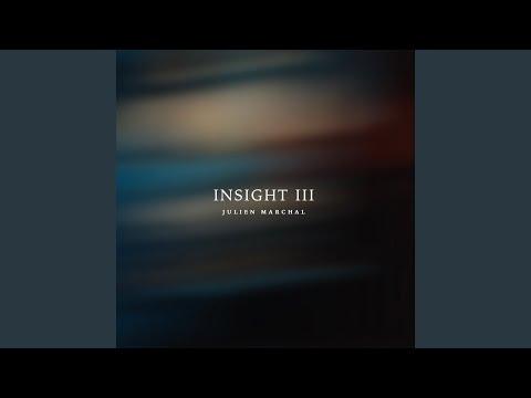 Insight XXVII