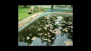 Video Swimming Pool Cover Story - Mesh vs Solid - Springfield Missouri MO. download MP3, 3GP, MP4, WEBM, AVI, FLV September 2017