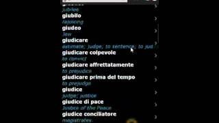 Italian English Dictionary & Translator for Windows Phone 7 by BitKnights