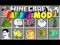 Minecraft MEME MOD | DOGE, JOHN CENA, PEPE, DAT BOI & MORE!!